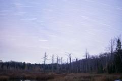 Lilly Pond Star Trails